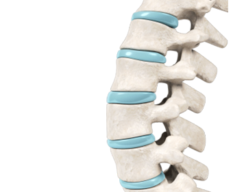Orthopedic Excellence: The Spine